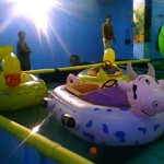 5-animal-bumper-boat