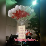 Balon Gas Plaza Senayan